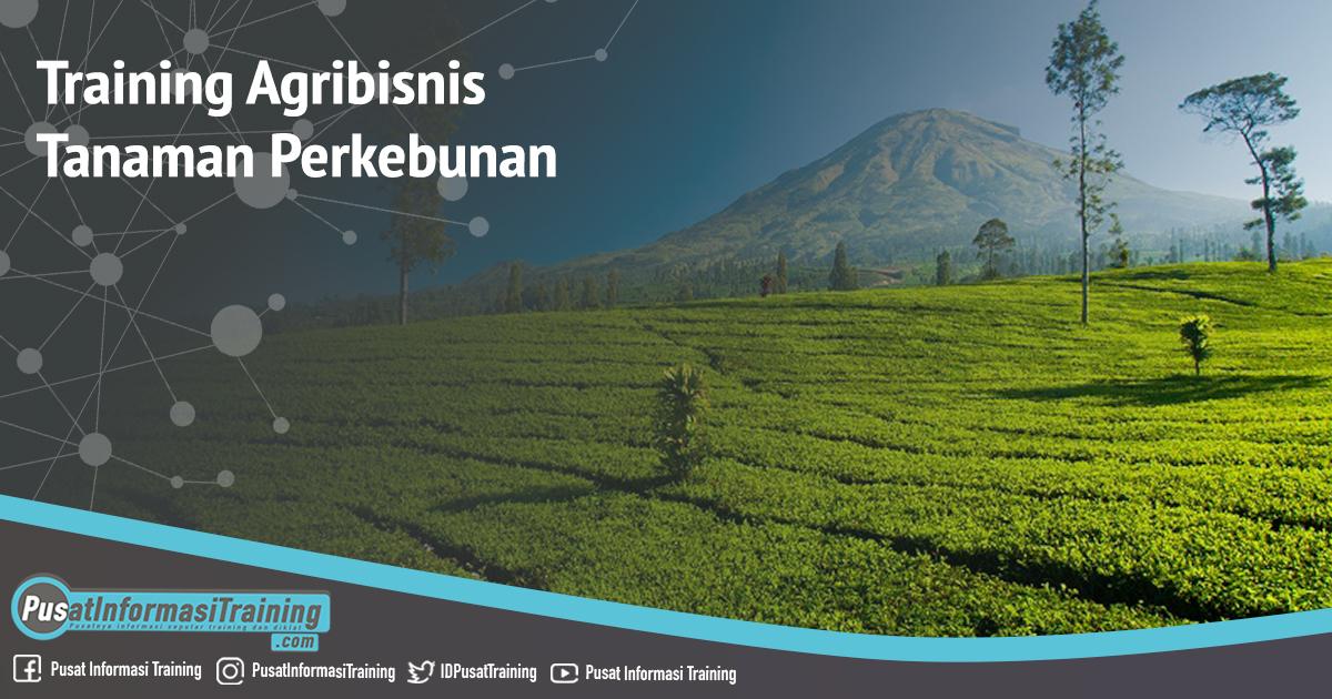 Training Agribisnis Tanaman Perkebunan Fitur Informasi Training Jadwal Pelatihan Jogja Jakarta Bandung Bali Surabaya  - Training Agribisnis Tanaman Perkebunan